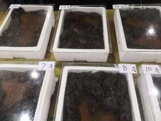 """""""六月黄""""抢鲜上市!二至三两大蟹占3成,售价便宜"""
